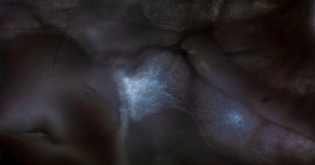 Black pigment against a blue light